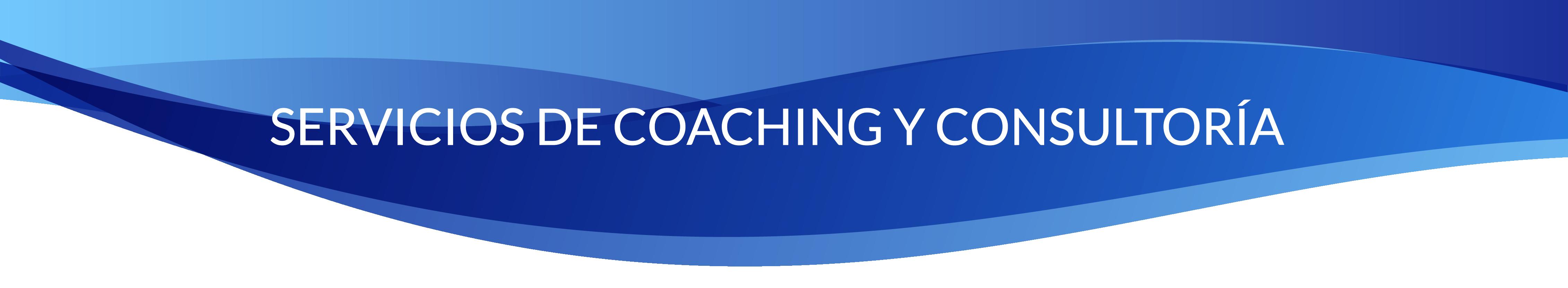 Consultoria y coaching-01